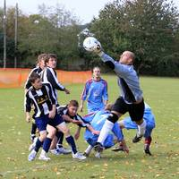 Taverham keeper called into further action