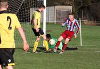 Hempnall v Hellesdon 30th Jan 2016 11